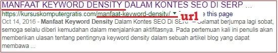 penerapan kata kunci dalam URL.jpg