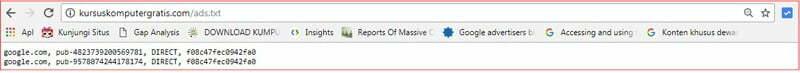 cara cek ads.txt dalam domain.jpg
