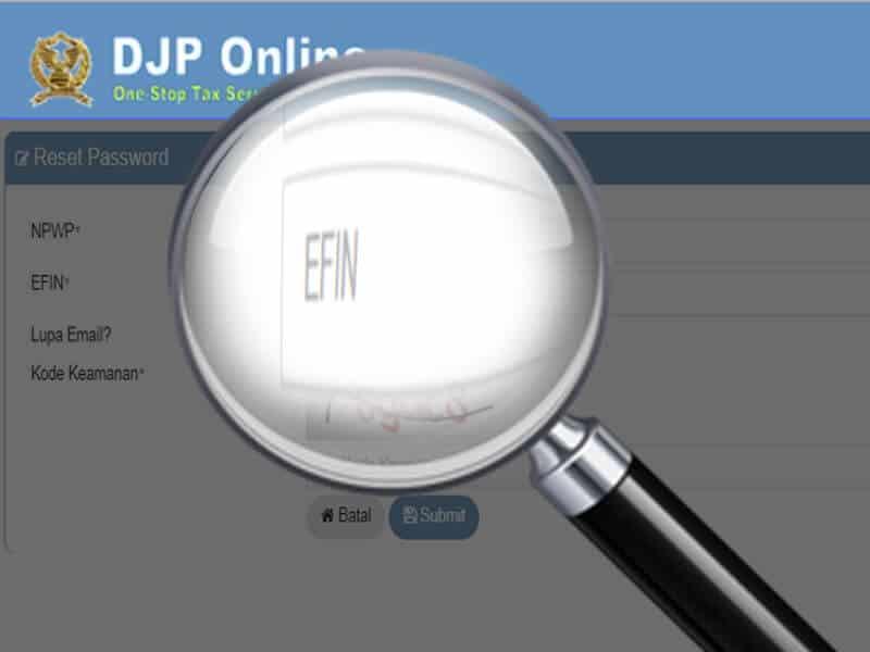 Cara Mendapatkan EFIN.jpg